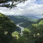 笠置山よりの木津川